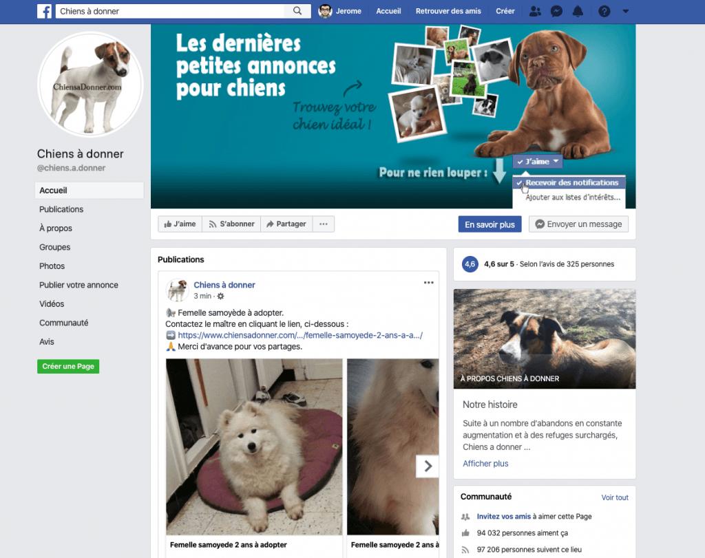 Page Facebook de Chiens a donner